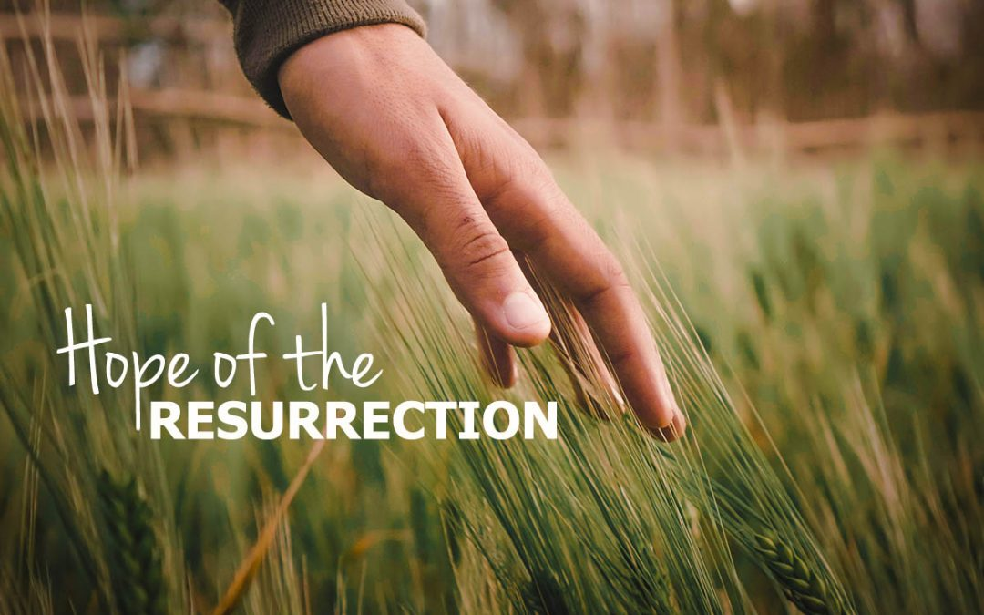 Hope of the Resurrection